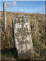 NY8117 : Milestone on the B6276 Brough to Middleton road by Karl and Ali