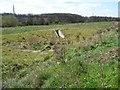SE3127 : Sustainable drainage system, Sharp Lane Plantations by Christine Johnstone