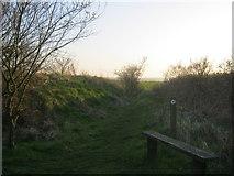 NZ2796 : Seat alongside public footpath from Druridge Links to Widdrington by peter robinson