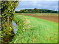 ST5726 : Dyke Brook by Nigel Mykura