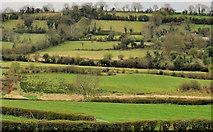 J2654 : Countryside, Drumlough near Hillsborough by Albert Bridge