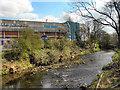SK3390 : River Don, Hillsborough Stadium by David Dixon