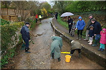 SP1634 : Duck Racing at Blockley Ford by John Walton