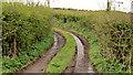 J3063 : Muddy track near Lisburn by Albert Bridge