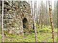 NN7060 : Lime Kiln by Mick Garratt
