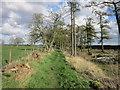NZ0468 : Heading east to East Wallhouses by Ian S