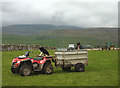 SD7073 : All go at lambing time by Karl and Ali
