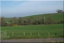J2333 : View north across Ballynagappoge Road towards the Bann by Eric Jones