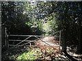 NZ1266 : Entering Ashbank Wood by Ian S