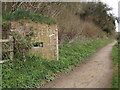 SU9444 : Pill Box by Eashing Copse by Colin Smith