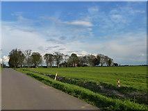 TF2714 : Queen's Bank Farm south of Cowbit near Spalding by Richard Humphrey
