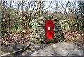 TQ5755 : Postbox, Pillar Box Rd by N Chadwick