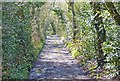 SZ2794 : Gravel Track to Leagreen by Mike Smith