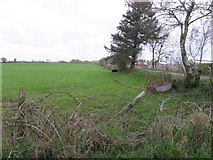 H5559 : Tycanny Townland by Kenneth  Allen
