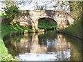SJ4333 : Yell Bridge No. 54, Llangollen Canal by David Martin