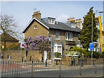 TQ2374 : Corner house with Wisteria by Robin Webster