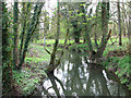 TM2179 : The River Waveney at Syleham by Evelyn Simak