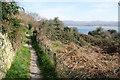 SH5537 : Llŷn Coastal Path by Bill Boaden