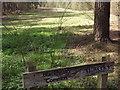 TQ0445 : Blackheath Common by Colin Smith