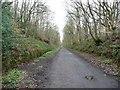 NZ1557 : Former railway cutting by Christine Johnstone