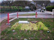 SX9065 : Patch of bleached grass, Teignmouth Road, Torquay by Derek Harper