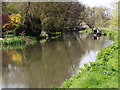 TQ0152 : River Wey Below Bowers Lock by Colin Smith