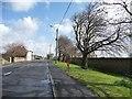 NZ1848 : Holmside Lane, Burnhope by Christine Johnstone