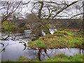 NN5200 : River Forth, Aberfoyle Bridge by David Dixon