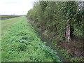 SK8953 : Field drain beside Green Lane by JThomas