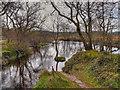 NN5200 : Allt a'Mhangam/River Forth by David Dixon
