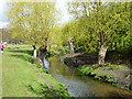 TQ2173 : Beverley Brook, Richmond Park by Robin Webster