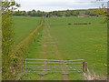 NS4733 : Gated Farm Track near Crossroads by wfmillar