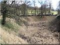 SP9908 : N.E. Corner of the Inner Moat at Berkhamsted Castle by Chris Reynolds