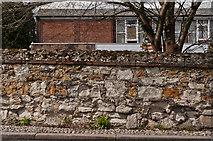 TQ2550 : Wall alongside Chart Lane by Ian Capper