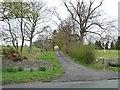 NZ1446 : Track to Hollinside Farm by Christine Johnstone
