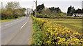 J4781 : The Crawfordsburn Road, Bangor (3) by Albert Bridge