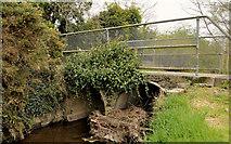 J4681 : Footbridge, Crawfordsburn (1) by Albert Bridge