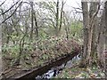 NS7066 : Ditch by Woodend Loch by Richard Webb