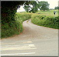 ST3799 : Lane west from the Usk road near Llanbadoc by Jaggery