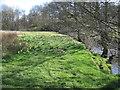 SE6794 : Springtime  at  Mercer  Bridge by Martin Dawes