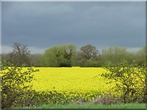 SK1515 : Striped landscape south of the A513 by Christine Johnstone