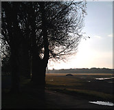 SK4833 : A lovely morning in West Park by David Lally