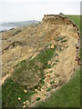 SY7081 : Crumbling cliffs near Bowleaze by Philip Halling