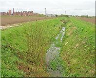 TF0744 : Drain running north of Mareham Lane by JThomas