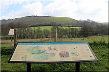 ST6601 : Information Board, Cerne Abbas, Dorset by Christine Matthews
