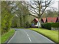 NS4687 : Old Military Road, Near Drymen by David Dixon
