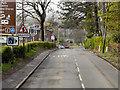 NS4082 : Balloch, Stirling Road by David Dixon