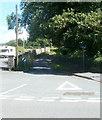 SN6220 : Minor road east of Heol Cennen, Ffairfach by Jaggery