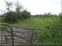 H3614 : Tullyanog Townland by Kenneth  Allen