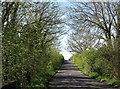 TL4054 : A spring morning on Haslingfield Road by John Sutton